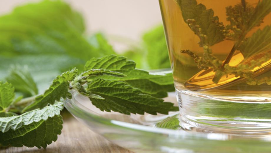 بهترین گیاه دارویی برای پروستات